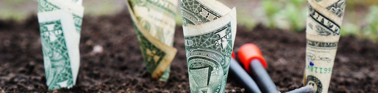 Emelkedőben a befektetési alapok