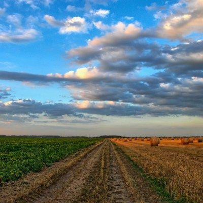 Mezőgazdasági biztosítások: jelentősen megugrott tavaly a kárkifizetés