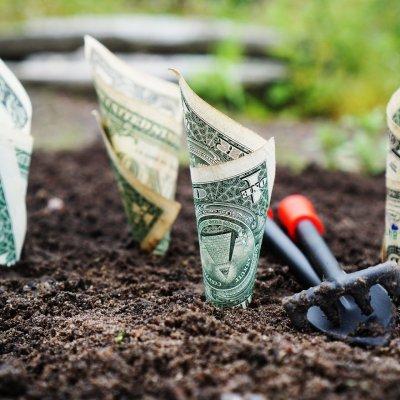 Kezdenek visszatérni a befektetők a befektetési alapokhoz