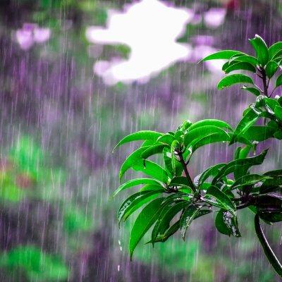 Sok helyen lesz eső a héten: több helyen van árvízvédelmi készültség